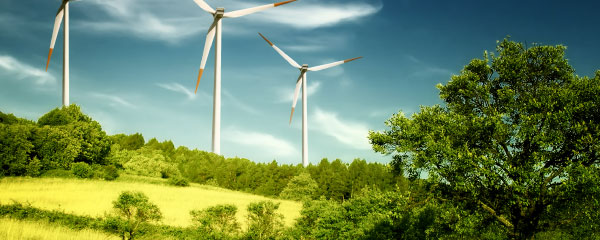 Green Energy: The Ultimate Oppositional Investment
